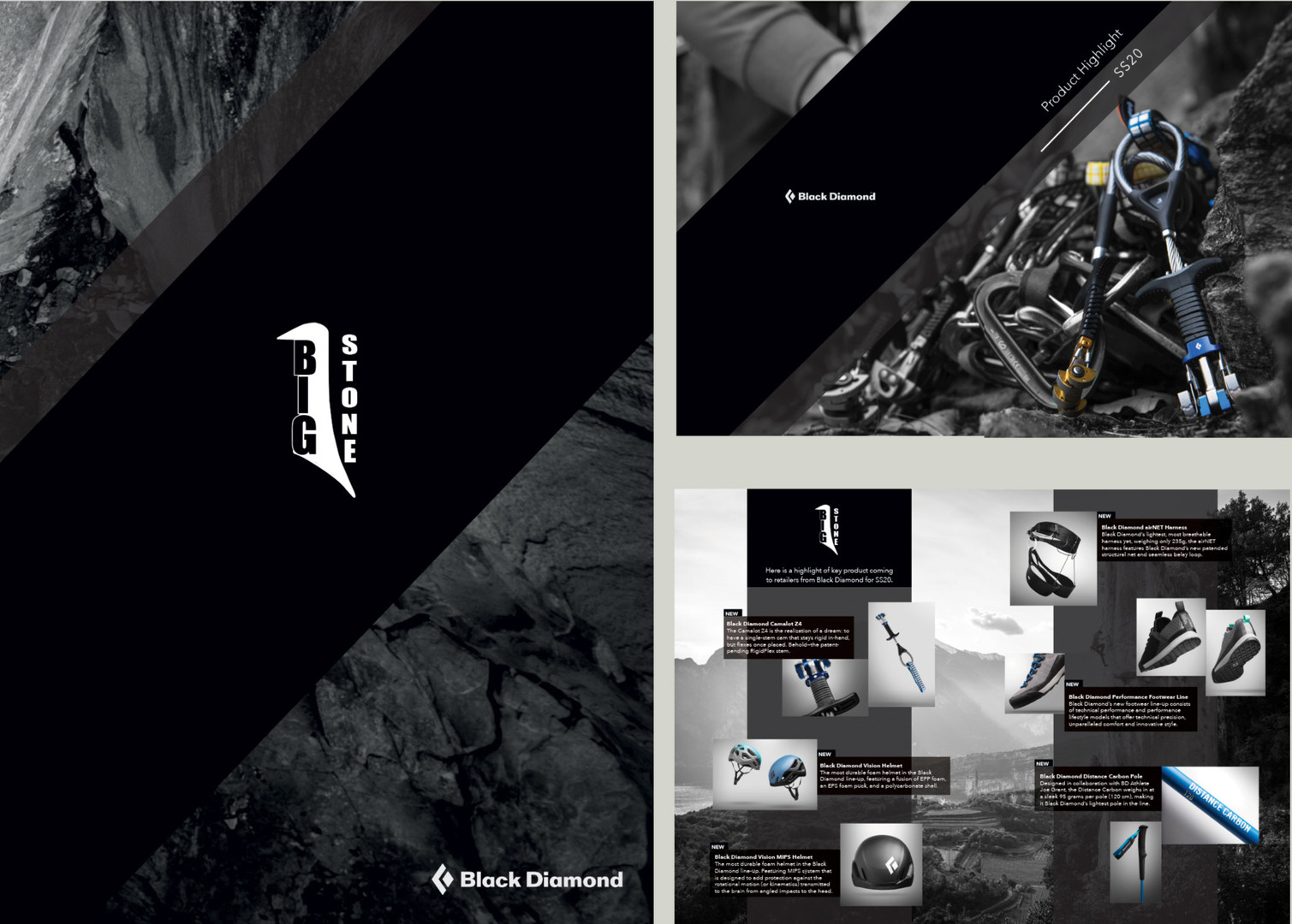 Bigstone Brochure and Website Design