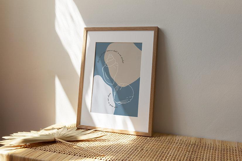 Seashell A4 Print