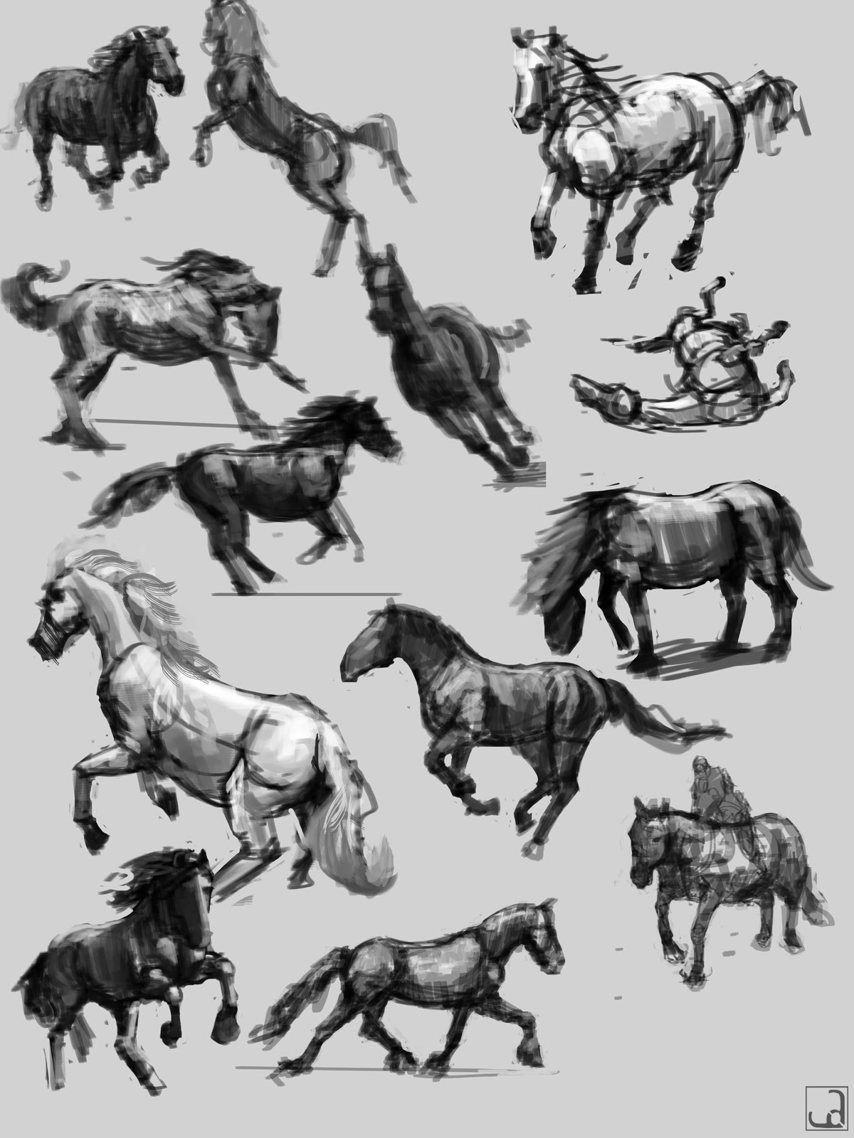 compilation horses