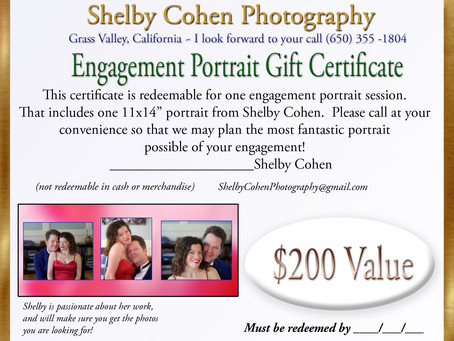"""Portraits By Shelby Cohen Photography """"Are you Engaged?"""""""