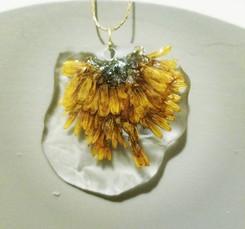 💛 #pressedbyag #pressedflowers #resinje