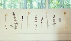 Summer In Full Bloom 🔅__#pressedbyag #p