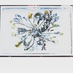 🎇 #pressedbyag #driedweddingflowers_#we