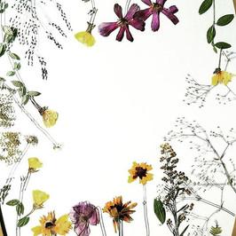 Feeling creative 🌿❤#pressedbyag #pressedflowers #organicart #letcreativityflow