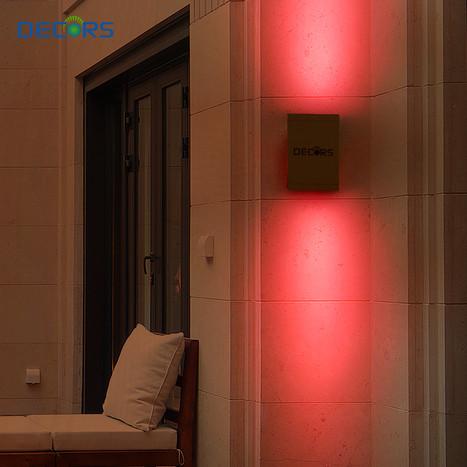 LED DUAL Light