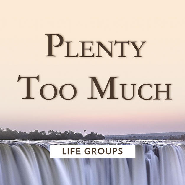 Plenty Too Much