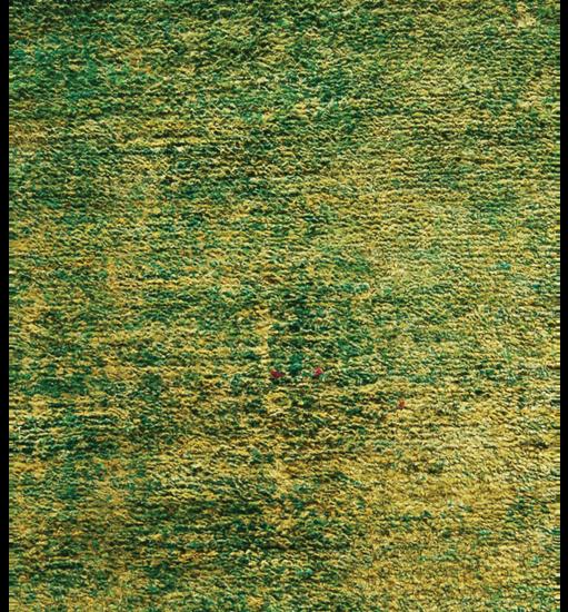 sari-collection_5