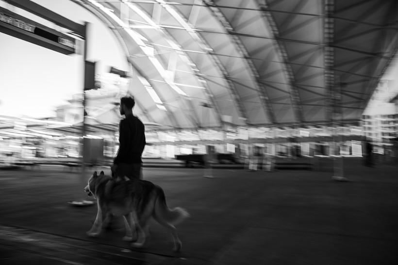 Loki At The Terminal