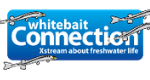 whitebait.png
