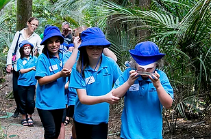 environment-education.png