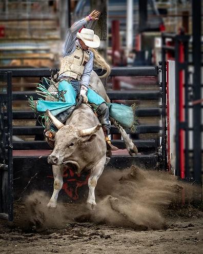 Ride-Em-Cowboy-Lauren-Heerschap-768x960.