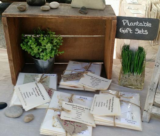 plantable-gift-set-display.jpg