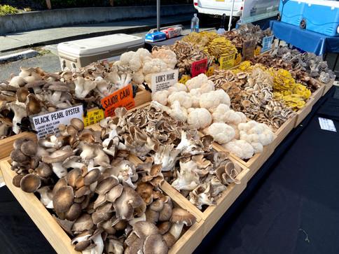 market3-1.jpg