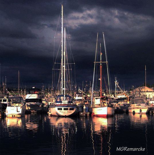 Salmon Bay DOck 8x8.jpg