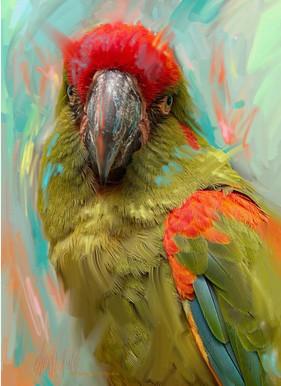 parrot-2021.jpg