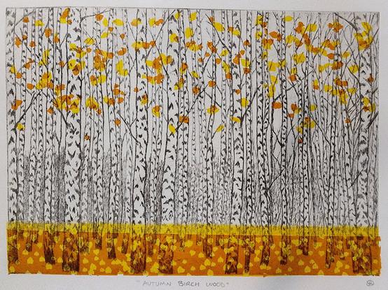 birchesfallcolor.jpg