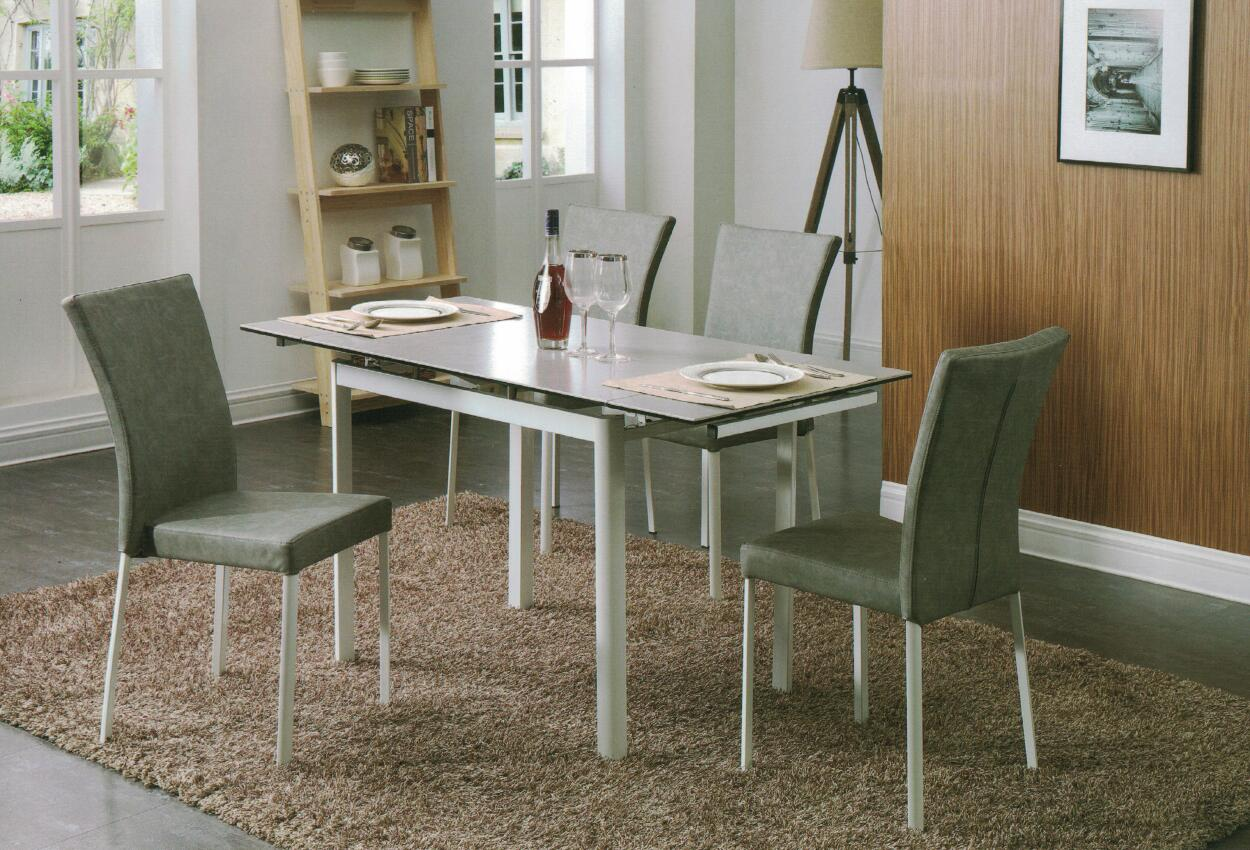 Dining Table DT-6830-GW-TR 水泥灰陶瓷玻璃