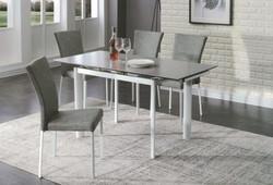 Dining Table DT-6810-TR 水泥灰陶瓷玻璃