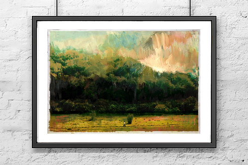 Cotswolds Forest -  Signed Giclee Print