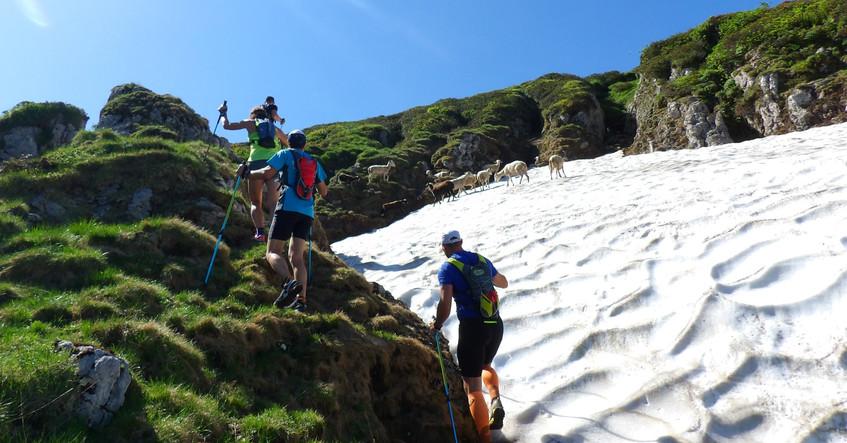 Trail avec le Dahu Ariégeois hiver