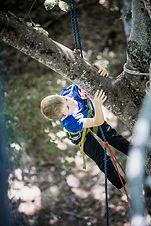 Découverte Grimpe d'arbres