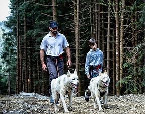 Cani-Randonnée avec Amarok Sport Aventure