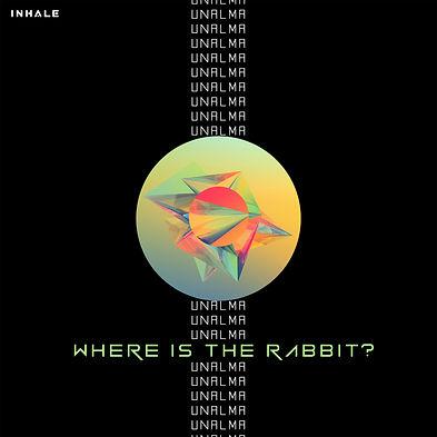 WHERE IS THE RABBIT.jpg