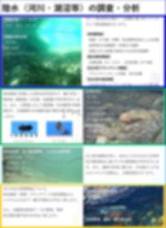 リーフレット(河川).jpg