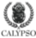 LOGO CALYPSO CHARTERS.png