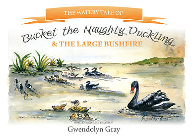 Bucket and the large bushfire 2D Cover (