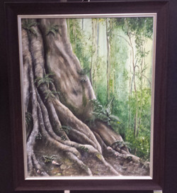 Fig Tree - Sold