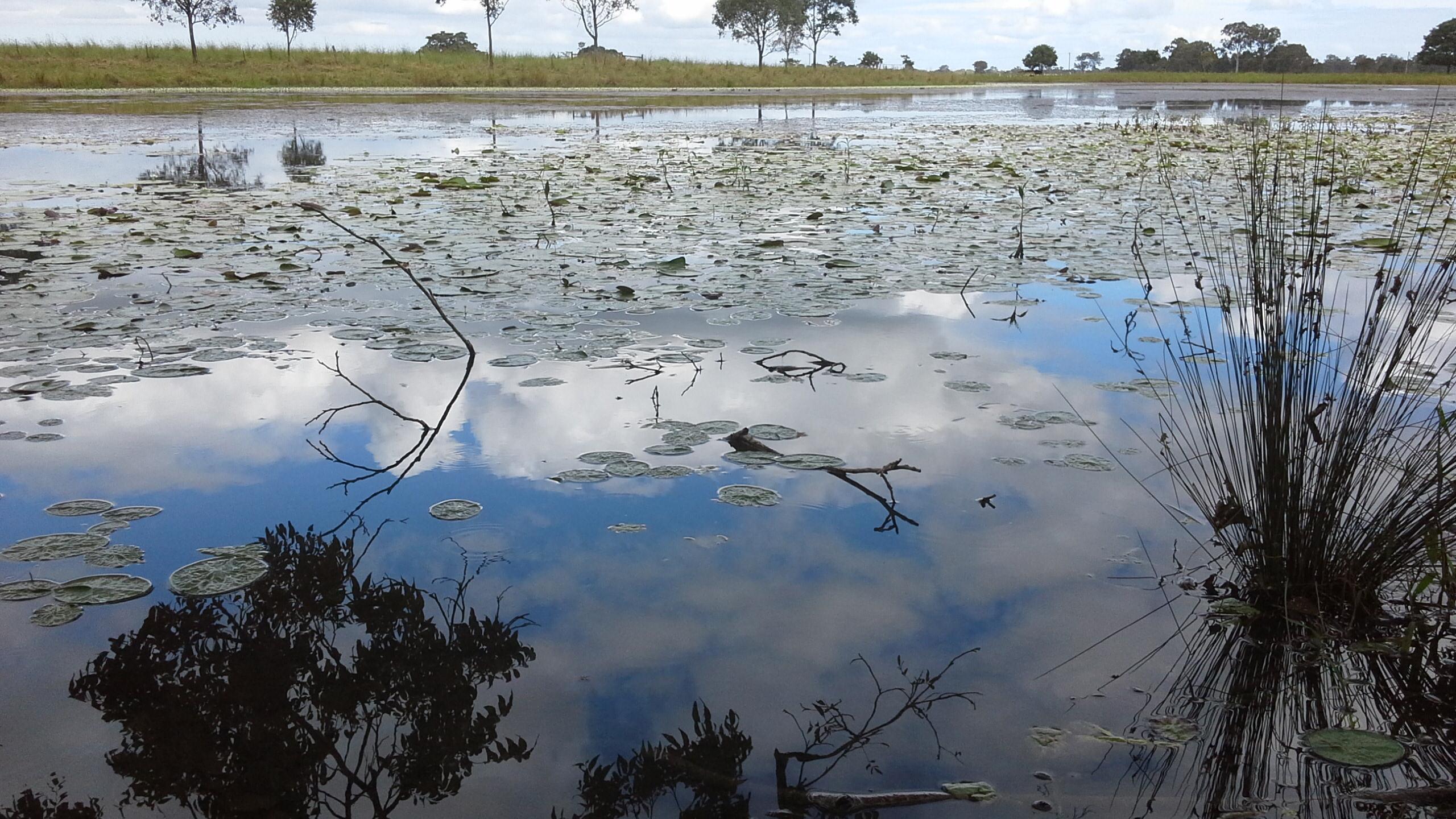 Horseshoe Lagoon
