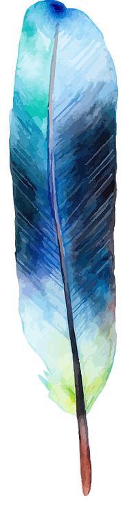 feather 9.png