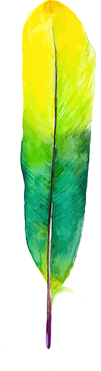 feather 8.png