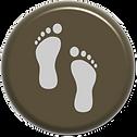 vivência icon.png
