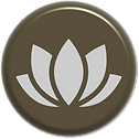imersão icon.png