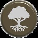 reconhecimento da terra icon.png