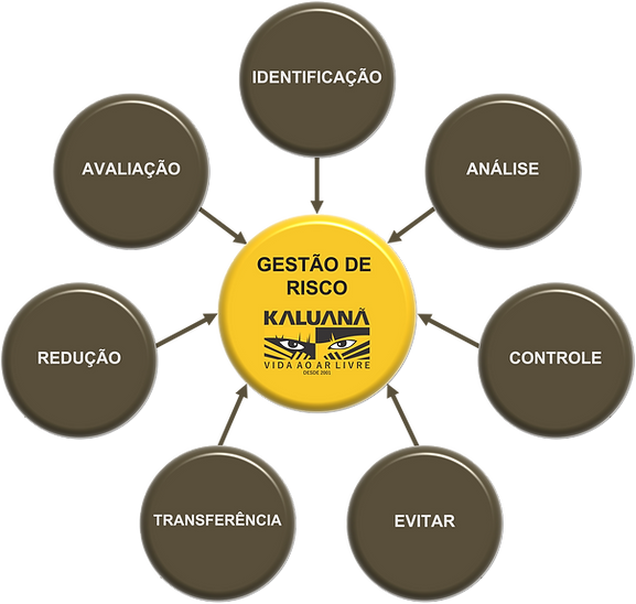 GESTÃO DE RISCO.png