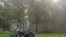 Day 37 - Rain