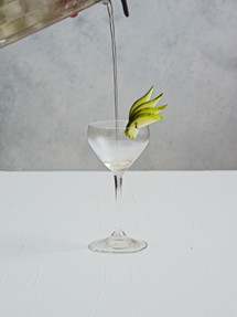 Pear cocktail |  Catching Peelings Photography