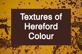 Veronika_Lavey_textures_of_Hereford_C.jpg