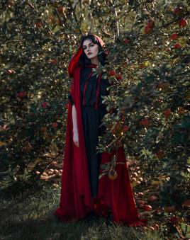 Veronika Lavey - Natural Dream.jpg