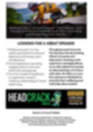 Copy of Copy of HeadCrack3.jpg