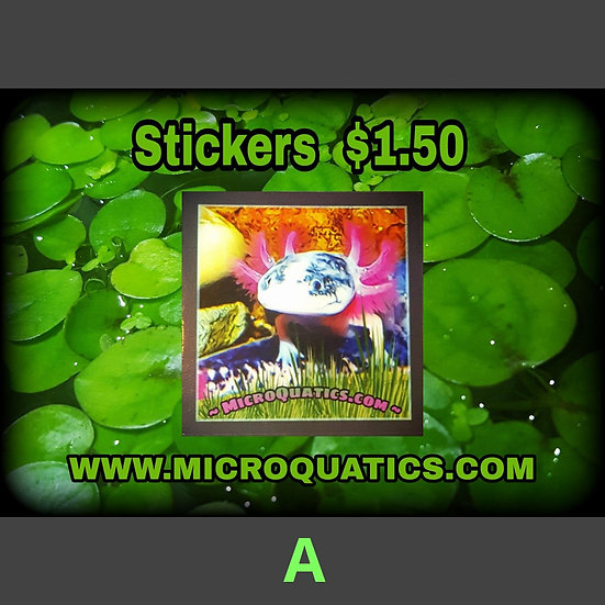 Stickers *Buy 1 Get 1 Free* Special Offer