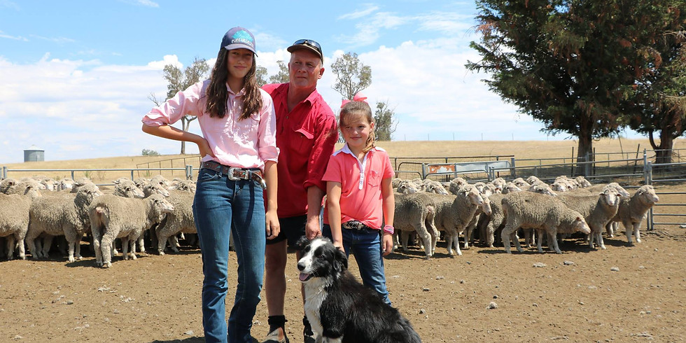 ANZ Agribusiness Flock Ewe Competition