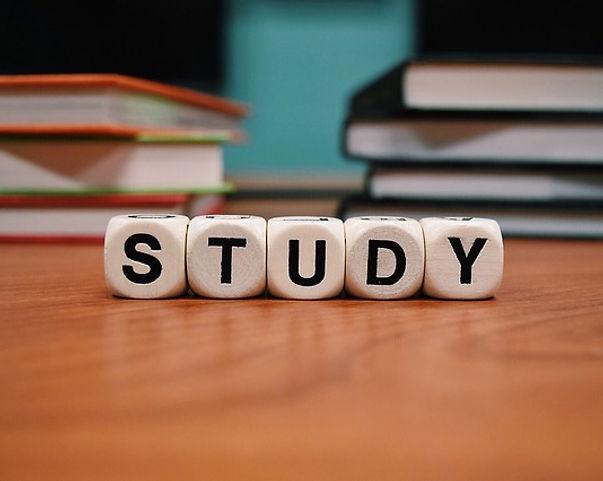 Tanulmányi vízum