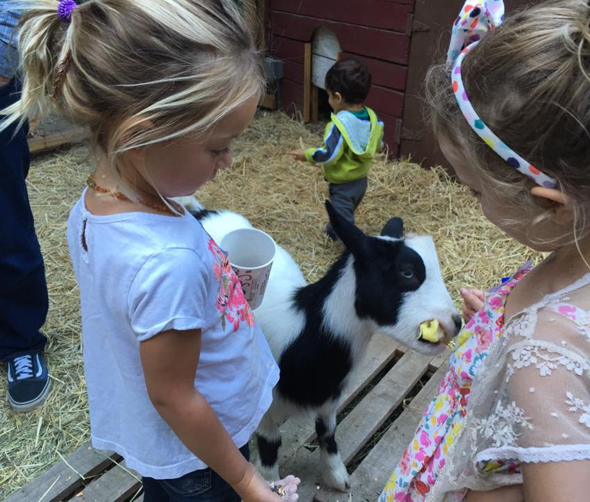 Two young girls with a goat