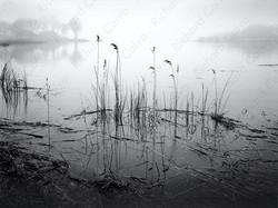 """The Quiet Before"" Richard Calvo Photography"