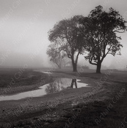 """Normandy Morning II"" Richard Calvo Photography"