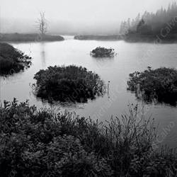 """Acadia"" Richard Calvo Photography"
